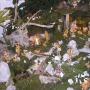 Jaslice v skupnosti na Cankarjevi v Novem mestu